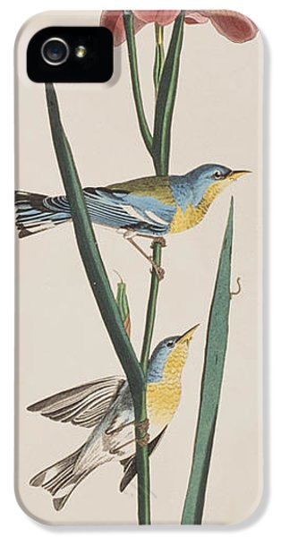 Blue Yellow-backed Warbler IPhone 5 Case by John James Audubon