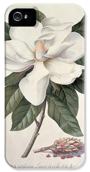 Magnolia IPhone 5 Case