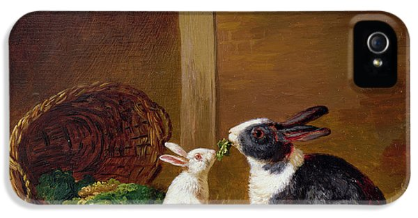 Two Rabbits IPhone 5 Case by H Baert