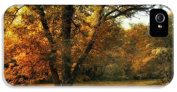 Autumn Arises IPhone 5 Case by Jessica Jenney