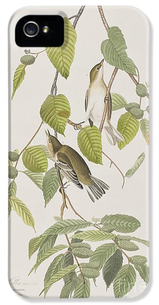 Autumnal Warbler IPhone 5 Case