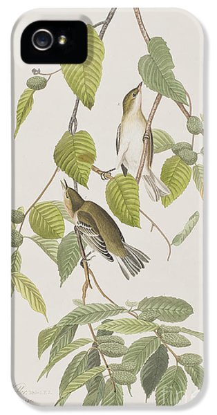 Autumnal Warbler IPhone 5 Case by John James Audubon