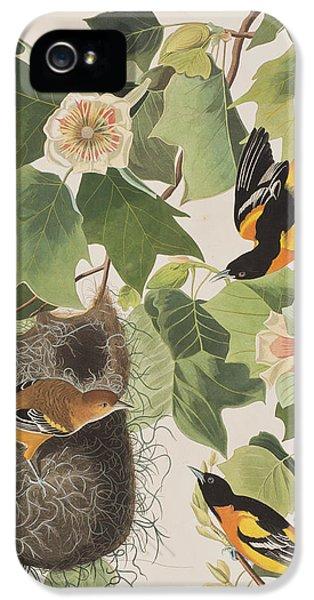 Baltimore Oriole IPhone 5 Case by John James Audubon