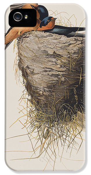 Barn Swallow IPhone 5 Case by John James Audubon