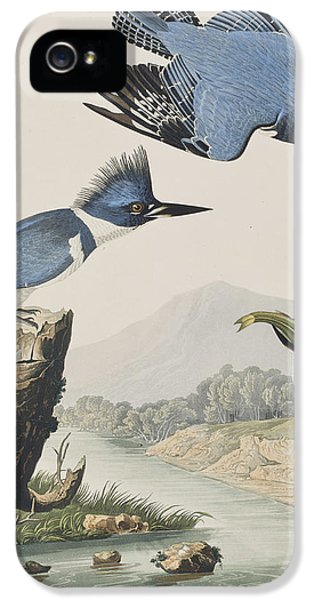 Belted Kingfisher IPhone 5 Case