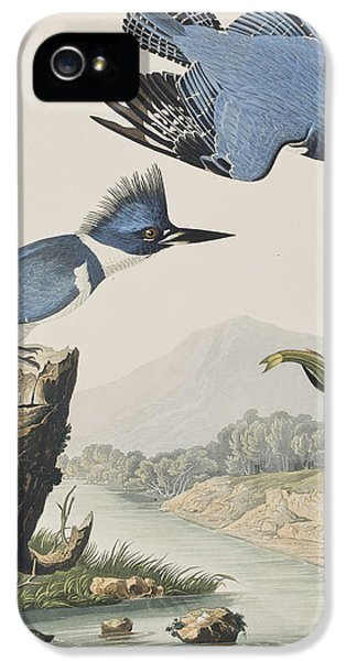 Belted Kingfisher IPhone 5 / 5s Case by John James Audubon