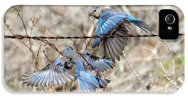 Bluebird Battle IPhone 5 Case by Mike Dawson