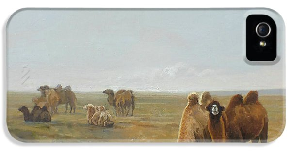 Camels Along The River IPhone 5 Case