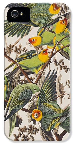 Carolina Parrot IPhone 5 / 5s Case by John James Audubon