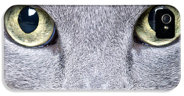 Cat Eyes IPhone 5 Case by Nailia Schwarz