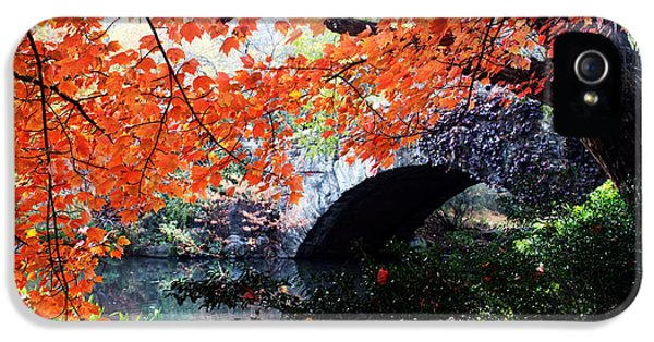 Central Park New York City IPhone 5 Case by Mark Ashkenazi