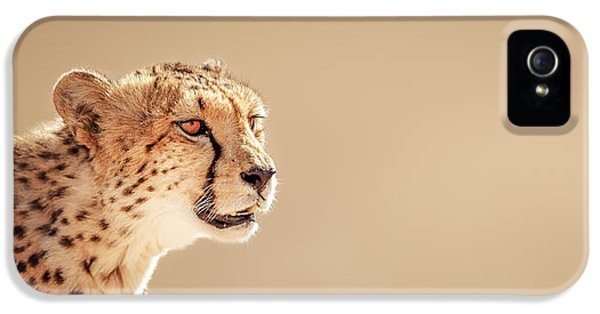Cheetah Portrait IPhone 5 Case by Johan Swanepoel