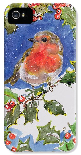 Christmas Robin IPhone 5 Case by Diane Matthes