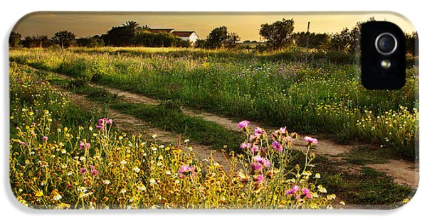 Meadow iPhone 5 Cases - Countryside Landscape iPhone 5 Case by Carlos Caetano