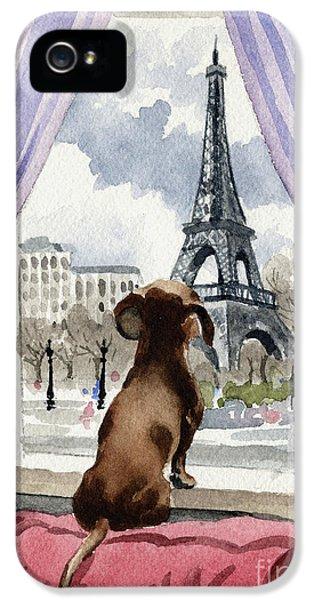 Paris iPhone 5 Case - Dachshund In Paris  by David Rogers
