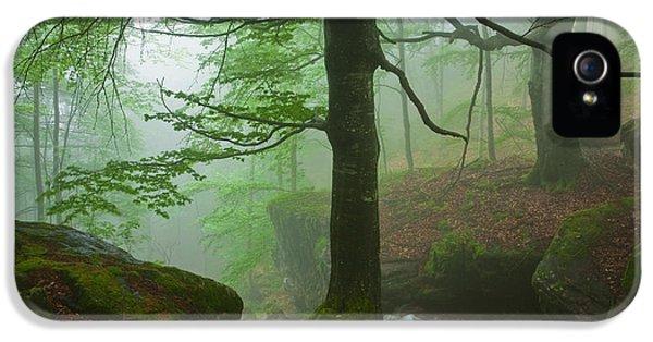 Dark Forest IPhone 5 Case by Evgeni Dinev