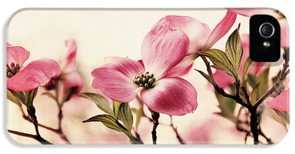IPhone 5 Case featuring the photograph Delicate Dogwood by Jessica Jenney