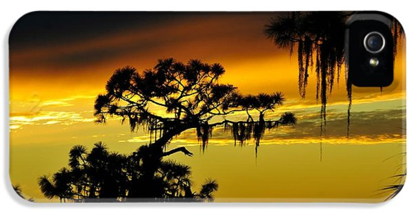 Central Florida Sunset IPhone 5 Case by David Lee Thompson