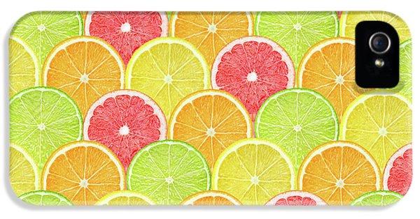 Fresh Fruit  IPhone 5 / 5s Case by Mark Ashkenazi