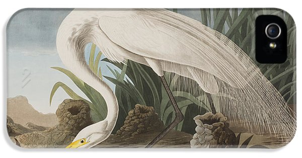 Great Egret IPhone 5 / 5s Case by John James Audubon