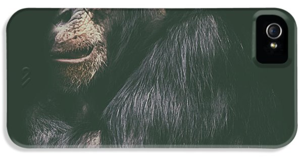 Orangutan iPhone 5 Case - Its Cold Outside by Martin Newman