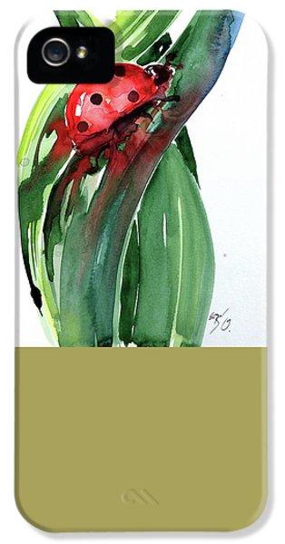 Ladybug iPhone 5 Case - Ladybird by Kovacs Anna Brigitta