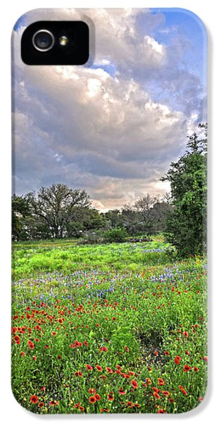Heaven And Nature Sing IPhone 5 Case
