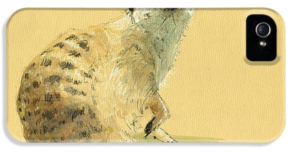 Meerkat Or Suricate Painting IPhone 5 Case by Juan  Bosco