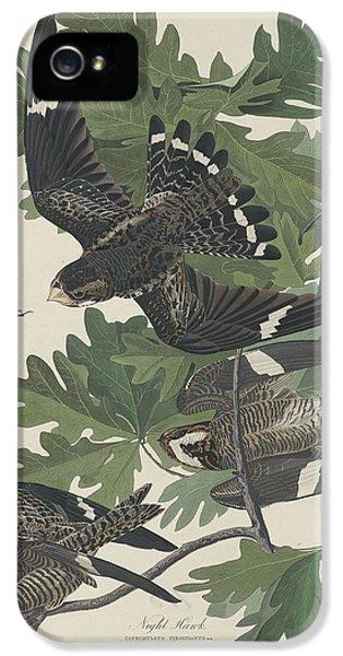Night Hawk IPhone 5 Case by Rob Dreyer