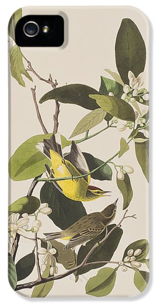 Palm Warbler IPhone 5 Case by John James Audubon