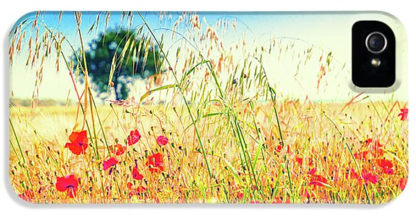 IPhone 5 Case featuring the photograph Poppies With Tree In The Distance by Silvia Ganora