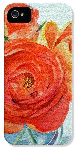 Rose iPhone 5 Case - Ranunculus by Irina Sztukowski