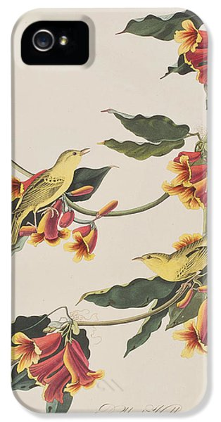 Rathbone Warbler IPhone 5 Case by John James Audubon