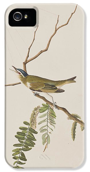 Red Eyed Vireo IPhone 5 Case by John James Audubon