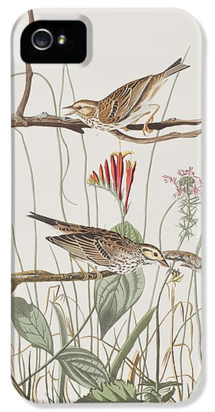 Savannah Finch IPhone 5 / 5s Case by John James Audubon