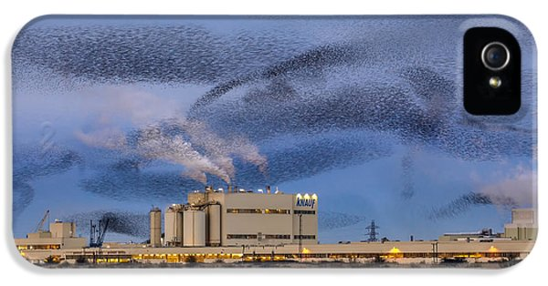 Starlings iPhone 5 Case - Starling Mumuration by Ian Hufton