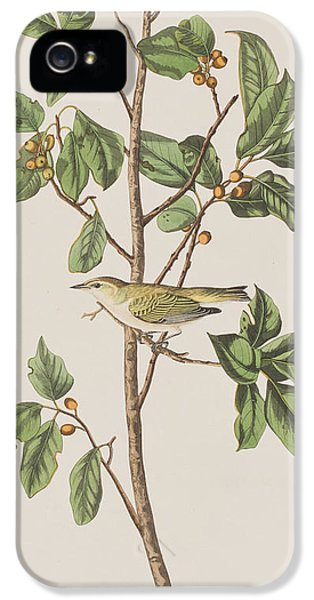 Tennessee Warbler IPhone 5 Case by John James Audubon