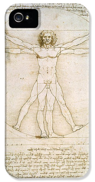 The Proportions Of The Human Figure IPhone 5 Case by Leonardo da Vinci