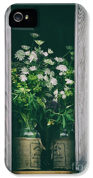 The Shed IPhone 5 Case by Tim Gainey