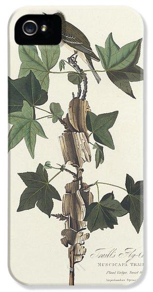 Traill's Flycatcher IPhone 5 Case by John James Audubon