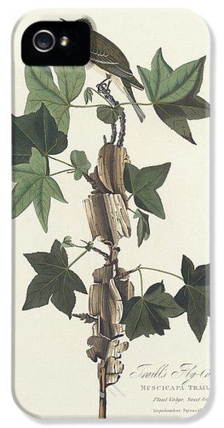 Traill's Flycatcher IPhone 5 / 5s Case by John James Audubon