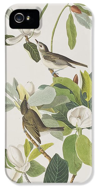 Warbling Flycatcher IPhone 5 Case by John James Audubon