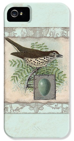 Welcome To Our Nest - Vintage Bird W Egg IPhone 5 Case by Audrey Jeanne Roberts