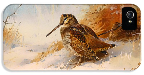 Winter Woodcock IPhone 5 / 5s Case by Mountain Dreams