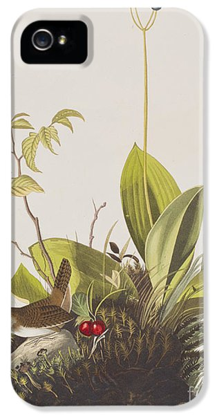 Wood Wren IPhone 5 Case by John James Audubon