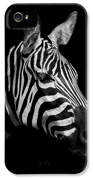 Zebra IPhone 5 Case by Paul Neville