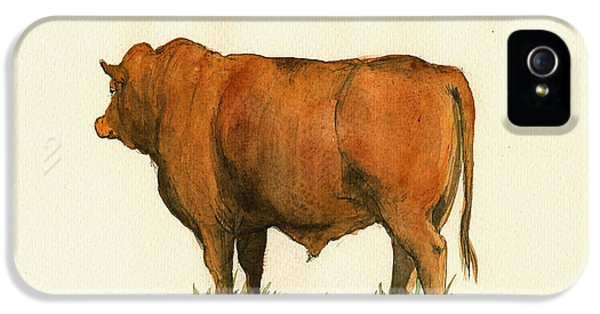 Zebu Cattle Art Painting IPhone 5 Case