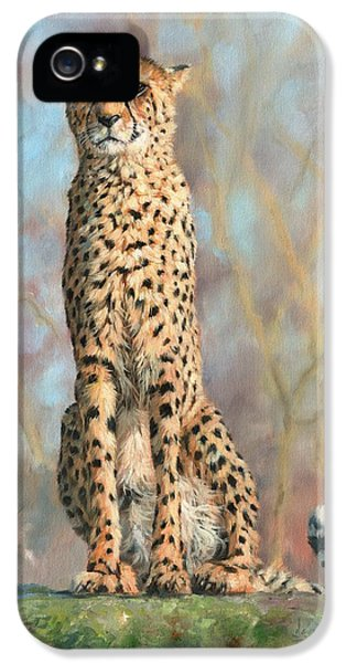 Cheetah IPhone 5 Case