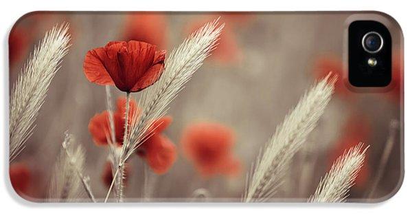Summer Poppy Meadow IPhone 5 Case by Nailia Schwarz