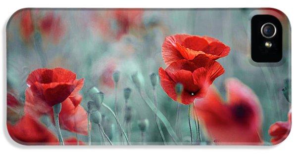 Summer Poppy Meadow IPhone 5 Case